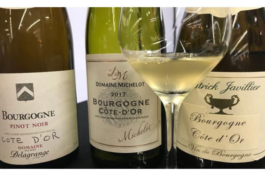 Nieuwe appellation: Bourgogne Côte d'Or