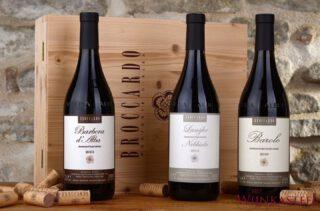 2019 Barbera d'Alba doc. Broccardo Broccardo Monforte d'Alba 🤍  Drie broers en zussen, Filippo, Laura en Federica Broccardo gaan zorgvuldig om met wat werd overgedragen aan hen door hun ouders, grootouders en overgrootouders op hun wijngaarden in Monforte d'Alba: De eerbied voor het vak en de liefde voor de wijn. Met gemoderniseerde technieken maken zijn de wijnen nog steeds zo veel mogelijk op een natuurlijke manier. De nieuwe generatie Broccardo wijnmakers kiest voor de een selectie van uitsluitend inheemse druivensoorten. Waarvan de award-winnende wijnen Barolo DOCG, Barbera d'Alba DOC en Dolcetto d'Alba DOC worden gemaakt.  Nu te koop bij www.hetwijnkasteel.nl
