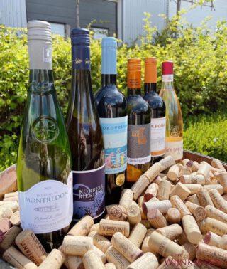 PAKKET ZOMERSE WIJNEN 🌼 - Met trots kunnen wij melden dat onze geheel nieuwe website vanaf heden online staat. Om dit te vieren hebben we dit heerlijke zomerse wijnen pakket in de aanbieding! 🍾🍾  Het is een mooie proefbox van 6 verschillende wijnen uit Frankrijk, Italië, Spanje, Portugal, Oostenrijk en Duitsland.   Waarom op vakantie gaan als je het vakantie gevoel hiermee ook in huis kan halen? 🙌🏼☀️  Nu voor maar €59,50 ‼️‼️  Bestel via link in bio 📤